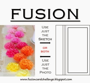 fusion challenge june 5 2014
