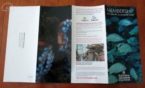 aquarium pamphlet