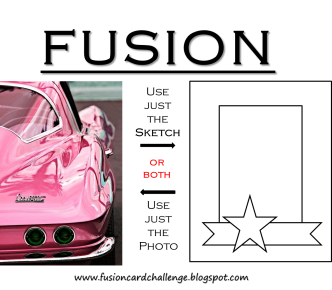 fusion Shiny Pink 9 11 2014