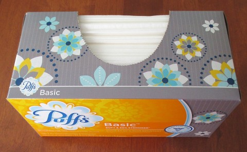 tissue box inspiration