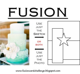 fusion embossed hombre 11 6 2014