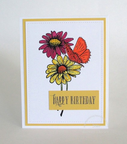 gerbera and butterfly birthday