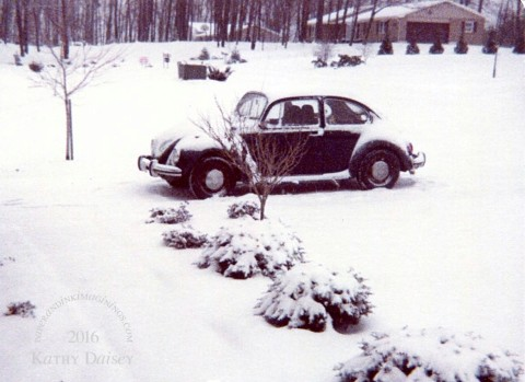 1979 blue bug