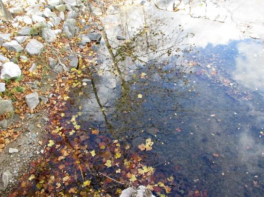 11-11-2016-reflections-on-the-patapsco