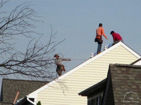 roofing-11-02-2016